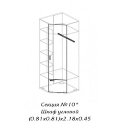 Персона секция № 10 шкаф угловой